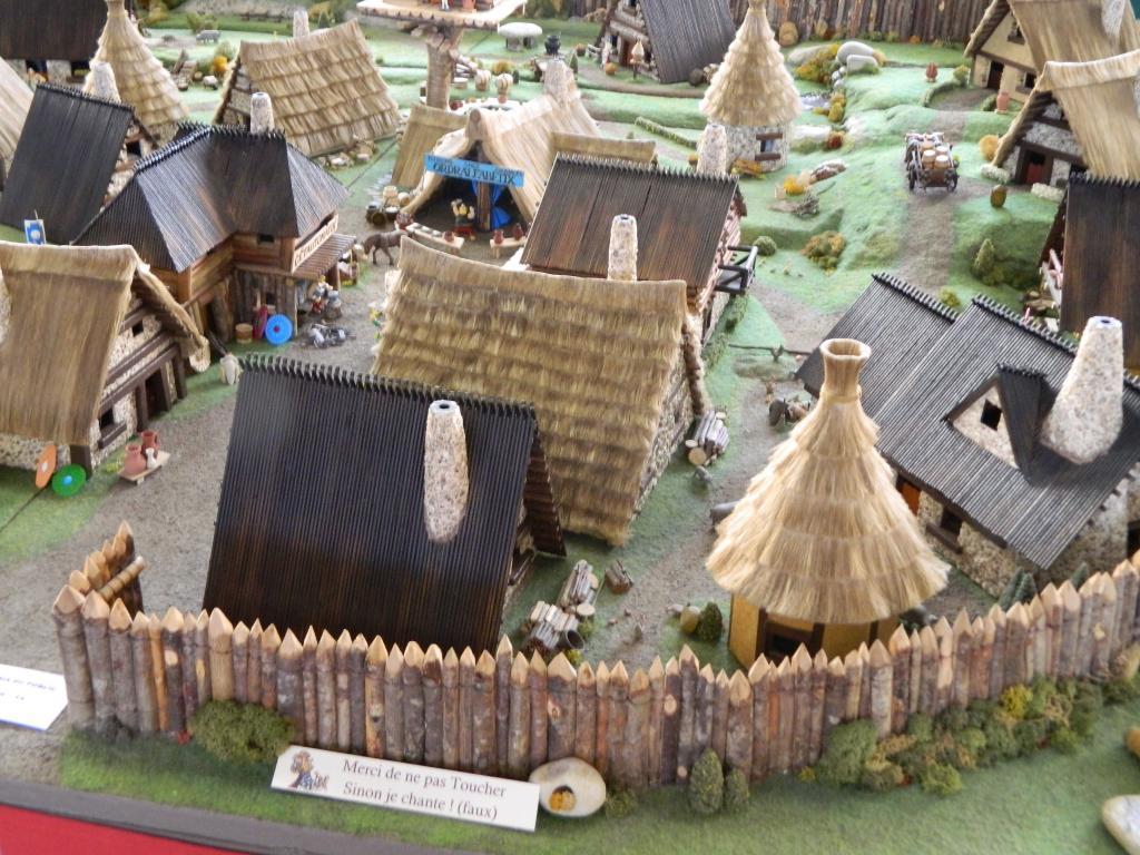 Le Village d'Astérix le Gaulois au 1/40  Dscn2986-3c06a5e